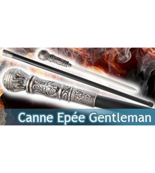 Canne Epée - Gentleman