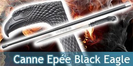 Canne Epée Black Eagle