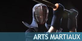 ARTS MARTIAUX BOKKENS