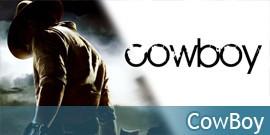 Cowboy Fusils